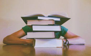 подготовка к ЕГЭ по обществознанию