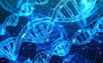 онлайн курсы ЕГЭ по биологии